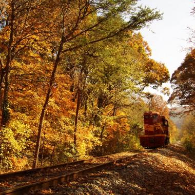 Hiawassee River Rail Adventures