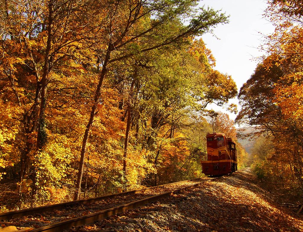 Hiawassee River Rail Adventure
