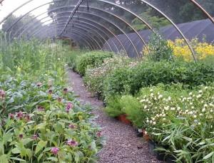 Overhill Gardens